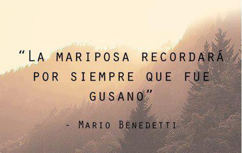 #Benedetti, gusano, mariposa
